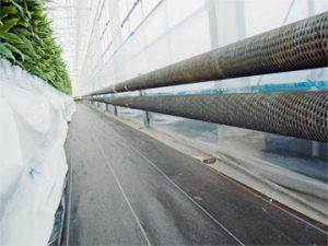 園芸用ハウス内のエロフィンチューブ配管