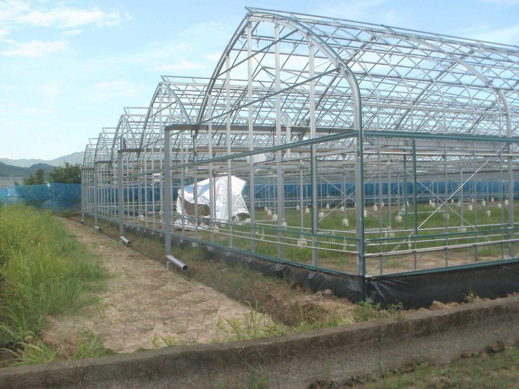 園芸用ハウス・温風暖房機・温水ボイラーの昭和産業の安芸市工事写真1