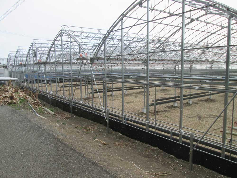園芸用ハウス,温水ボイラー,暖房機エロフィンチューブの製造販売を行う昭和産業が建てた四万十町園芸用ハウス6号棟の写真1